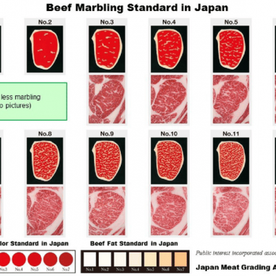 Official-Beef-Marbling-Standard-including-Beef-Color-Standard-and-Beef-Fat-Standard